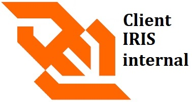 IRIS internal WebSocket Client